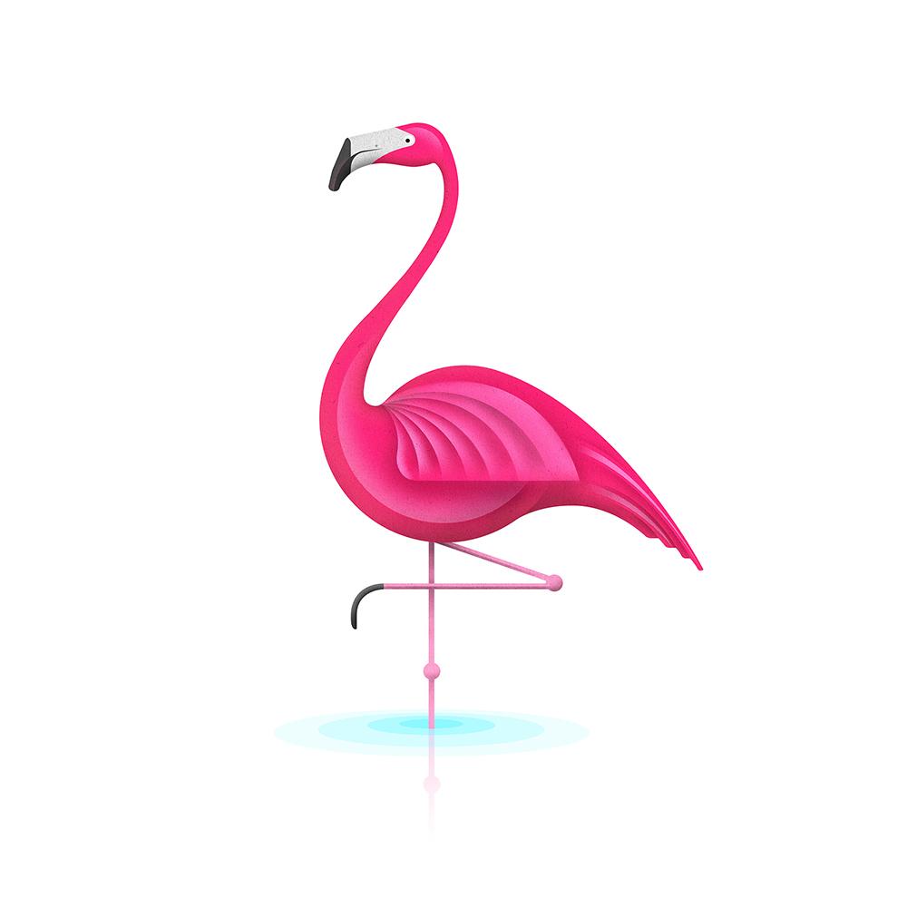 Funny Flamingo Jokes A Flamingo Funny By Arbok X | Sexy ... - photo#18