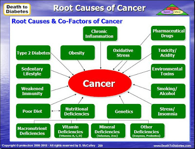 Cancer Root Causes & Factors