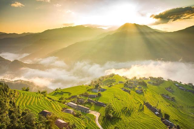 Cũng giống như ở Mù Cang Chải, người dân tại Hoàng Su Phì cũng trồng lúa trên những thửa ruộng bậc thang. Tới mùa gặt, du khách sẽ được chiêm ngưỡng những thửa ruộng vàng ươm từ chân đến tận đỉnh thung lũng tựa như một vòng xoáy vàng rực rỡ.