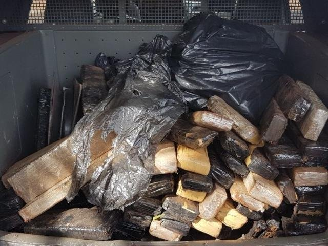 Guarda Municipal de Campo Grande (MS) apreende 89 kg de maconha abandonados em parque