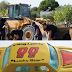 Ανατροπή στο τέλος των ερευνών στην Κω! Βρήκαν το αυτοκινητάκι του μικρού Μπεν; (photos)