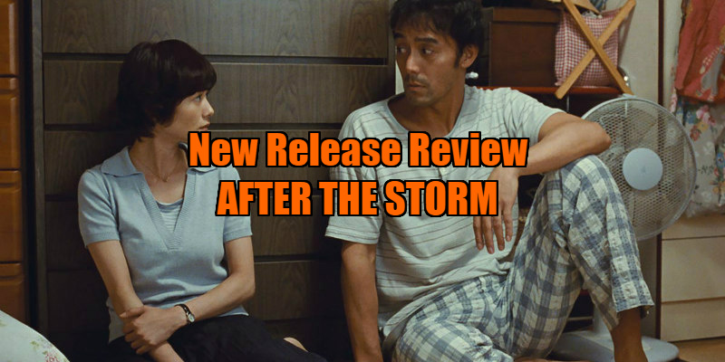 after the storm review