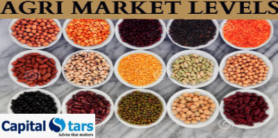 Agri commodity calls, Agri Commodity Tips, Agri futures Tips, Chana Tips, Free  Commodity Tips, Free Agri Tips, Jeera Tips, MCX Tips Services,