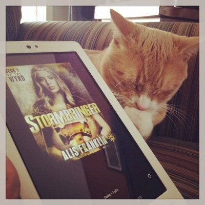 Ollie lays in his striped chair, eyes closed and head bent over one paw pressed close against his chin, like he's thinking very hard about something. In front of him is a white Kobo with Stormbringer's cover on its screen. The cover features a very white, very blonde young woman with fur draped over her shoulders and a large, two-headed hammer held in front of her.