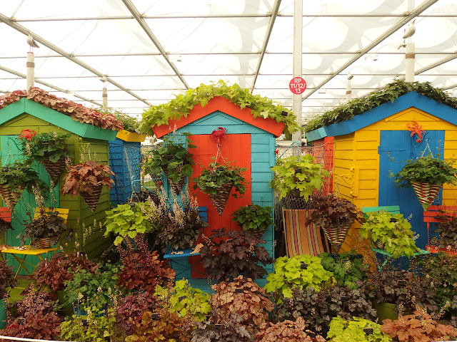 Heucheraholics Haven at Chelsea Flower Show