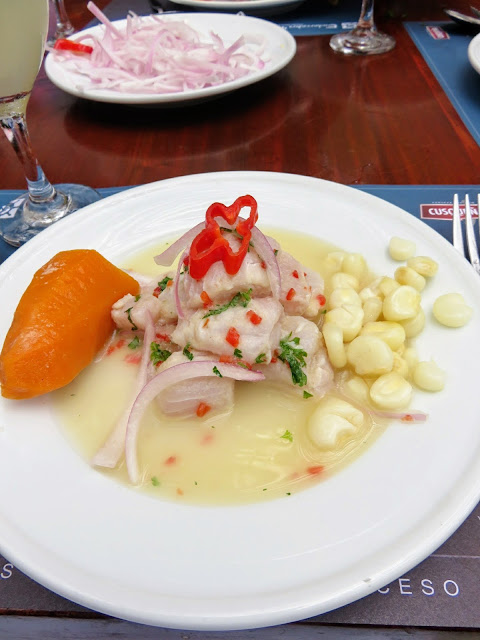 Plate of ceviche that I made myself at Embarcadero 41 on our Lima Gourmet Company Food Tour in Lima Peru