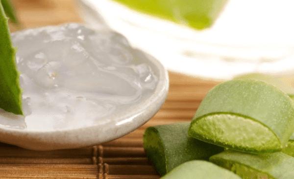 5 manfaat daun Lidah Buaya (Aloe Vera) untuk wajah berminyak dan berjerawat