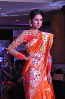South Indian Celebrities Pos at Love For Handloom Collection Fashion Show  0054.jpg