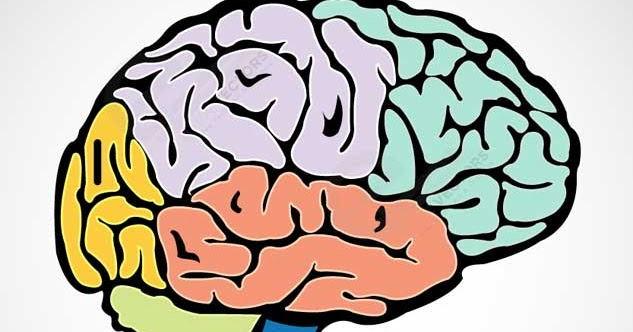 Неврология для вас: Дисциркуляторная энцефалопатия