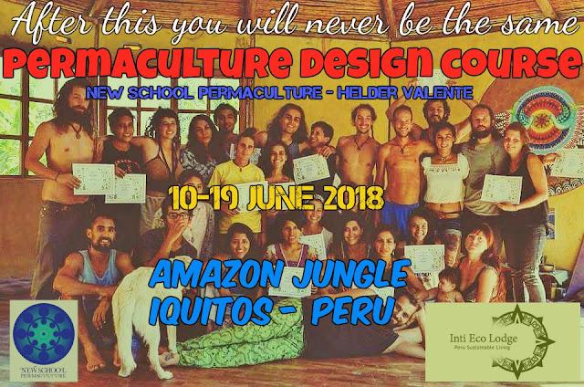 http://sublimart.blogspot.com/2018/03/new-school-permaculture-design-course.html