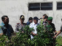 Lagi, BNN Grebeg Ratusan Pohon Katinon di Puncak Cisarua