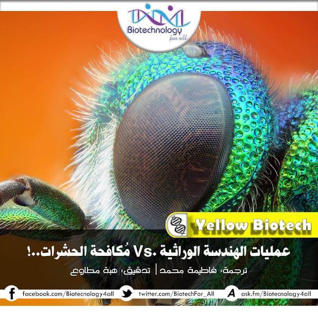 الهندسة الوراثية في مكافحة الحشرات