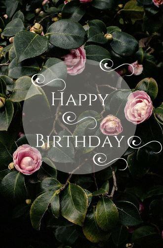 happy-birthday-darling-cake