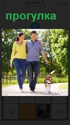 пара на прогулке с собакой