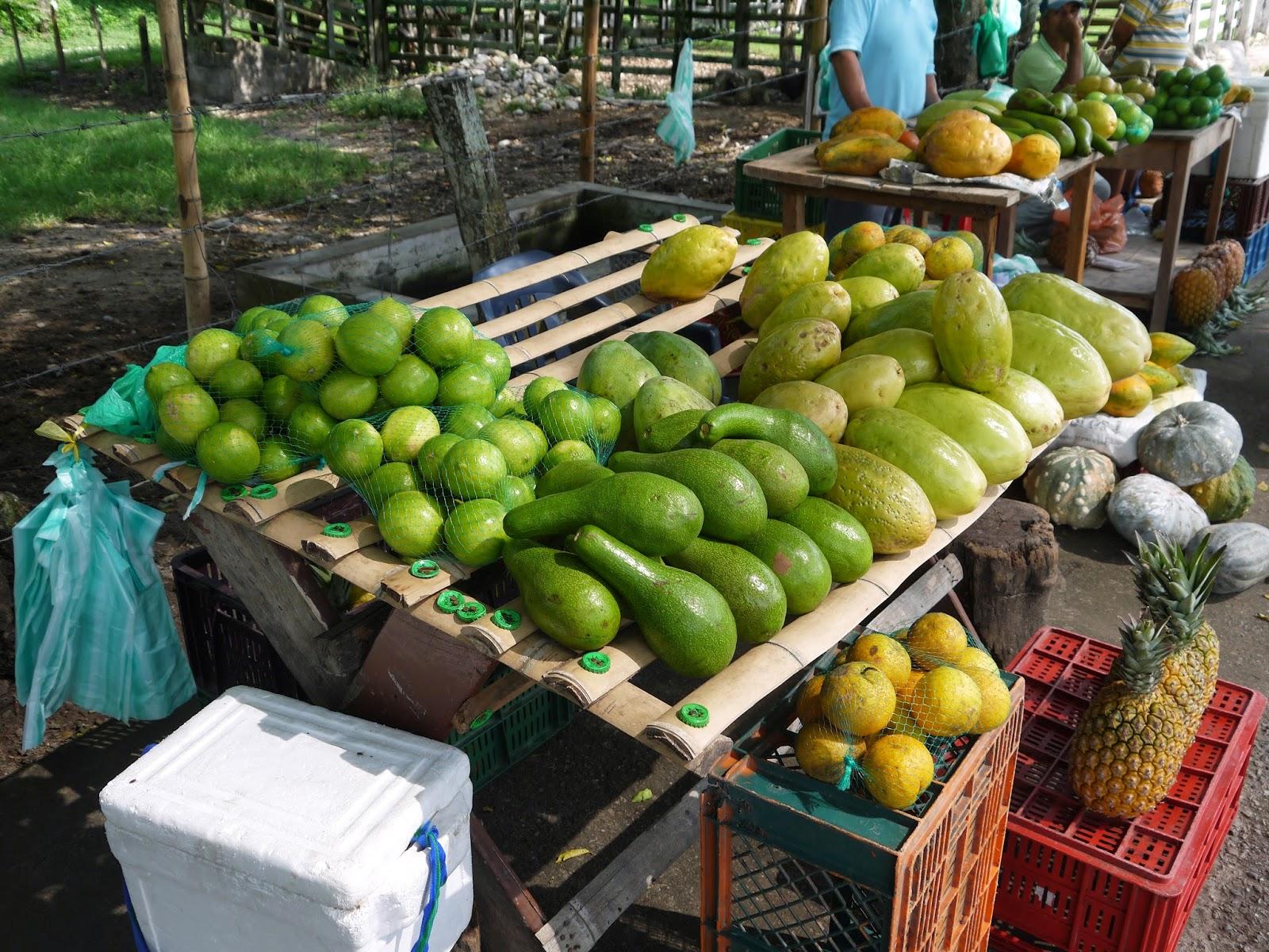 Fruta se venda