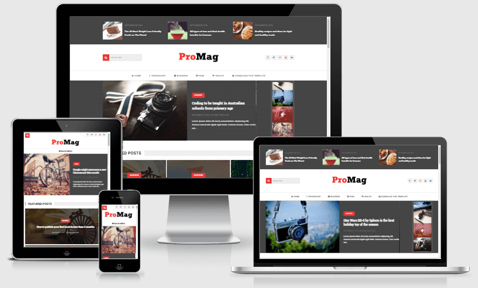 Download ProMag Responsive Minimalistic Blogger Template