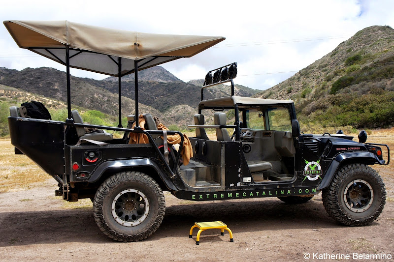 Cape Canyon Expedition Hummer