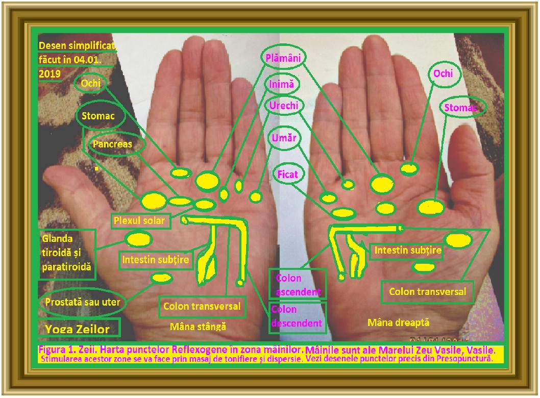 ce boli ale articulațiilor mâinilor sunt