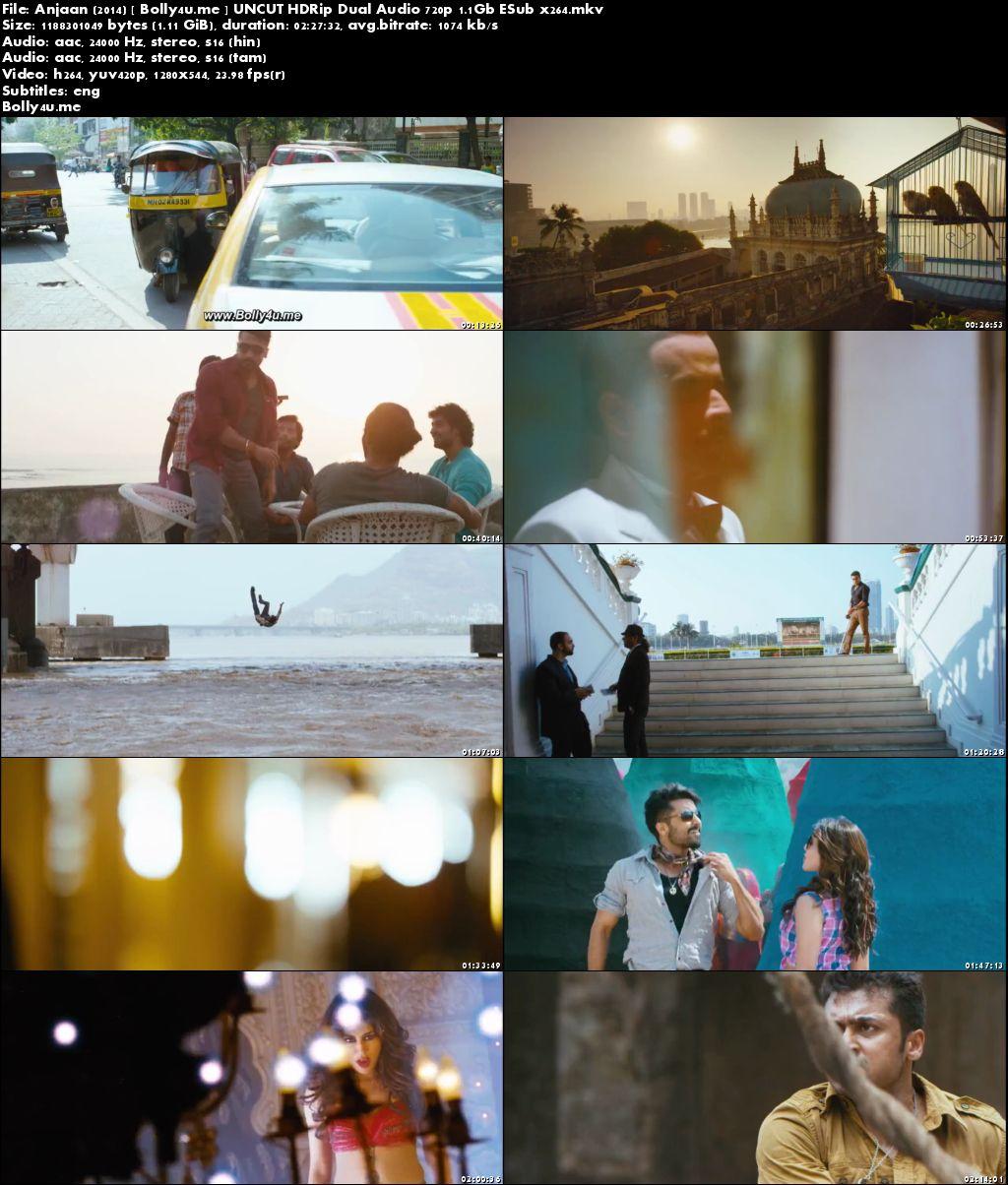 Anjaan 2014 HDRip UNCUT Hindi Dubbed Dual Audio 720p ESub Download