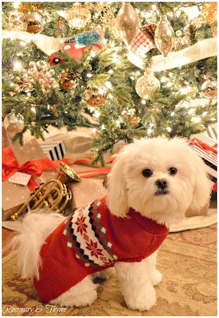 Paroles We wish you a Merry Christmas par Chants de Noel Paroles