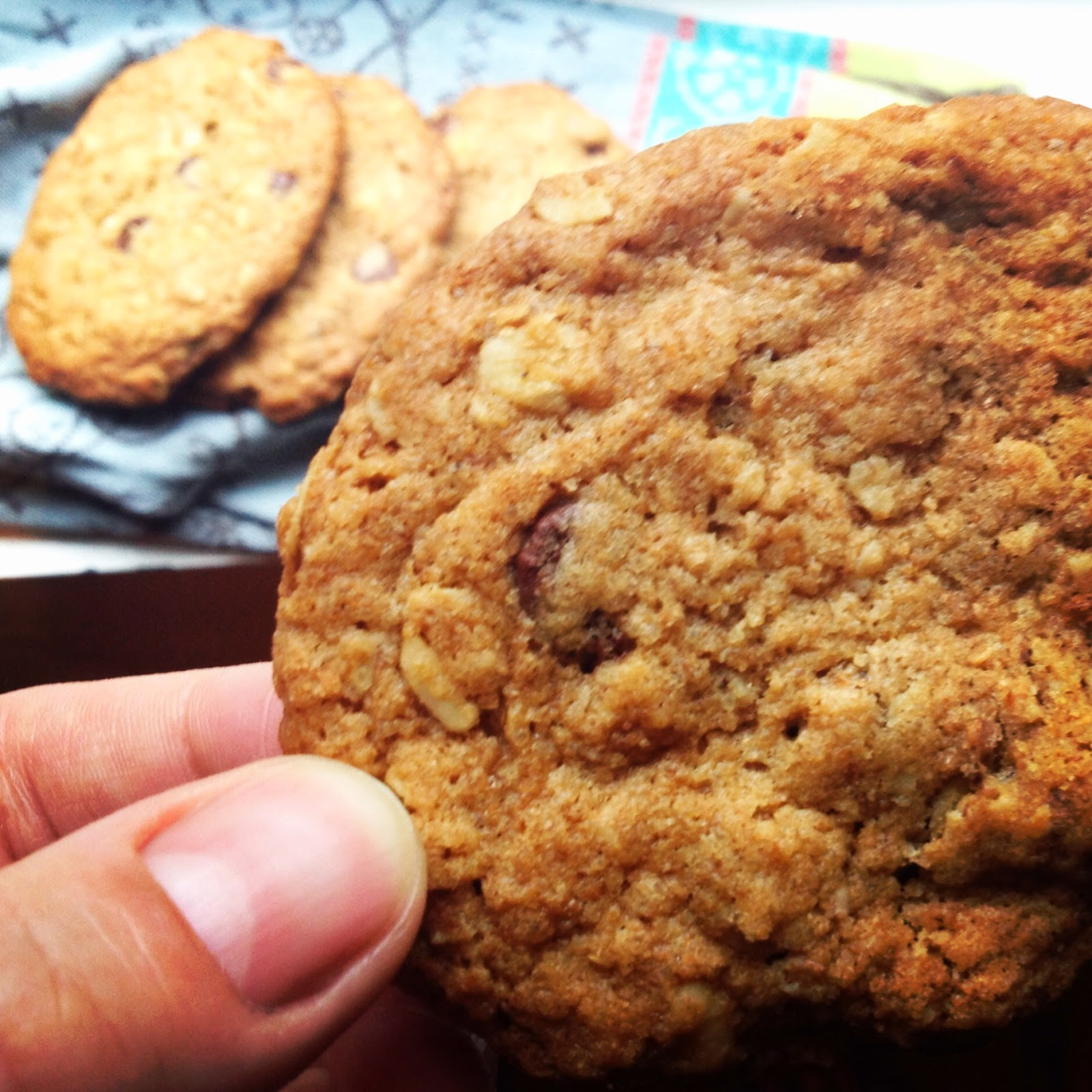 Smitten Kitchen Oatmeal Cookies: Foodrefuge: Salted Oatmeal And Dark Chocolate Lactation