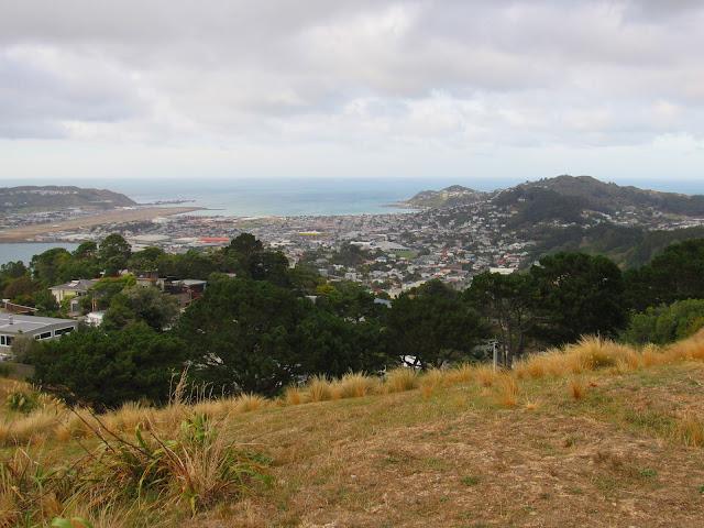 Wellington vista desde el Monte Victoria