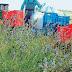 Δωρεάν μαθήματα βιολογικής γεωργίας σε ανέργους, από καθηγητές του ΑΠΘ