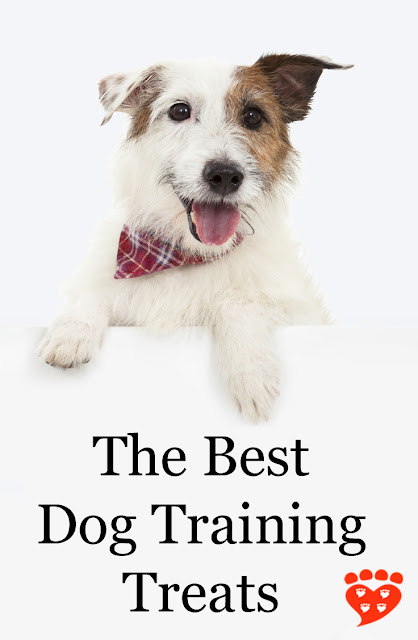 A guide to the best dog training treats. The poster features a cheeky Jack Russell Terrier. #Train4Rewards