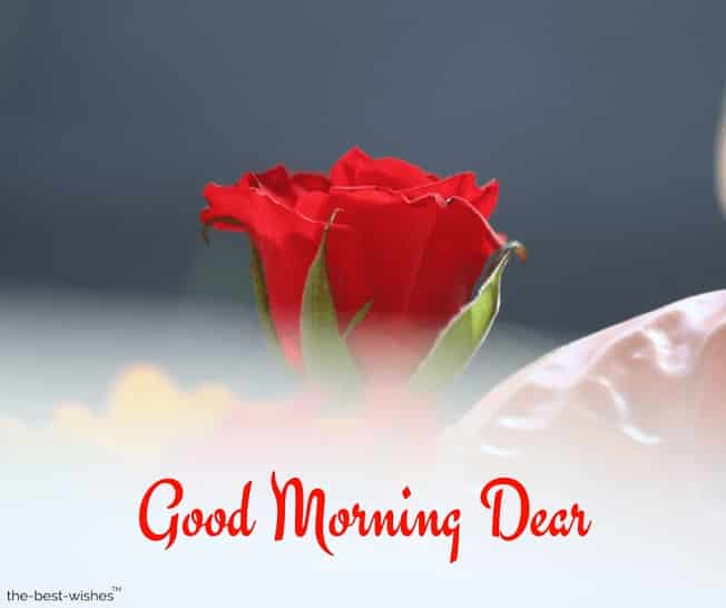 good morning dear friend images
