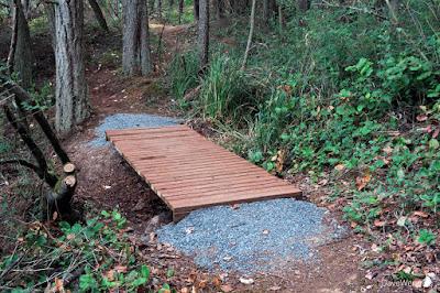 New Wadi Footbridge, The John Tursi Trail