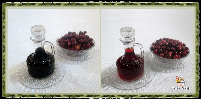 Aceto balsâmico e vinagre de jabuticaba 1