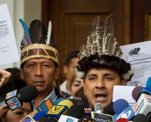 Ygarza: Ningún obstáculo ni psicología de terror impedirá a indigenas llegar a Caracas