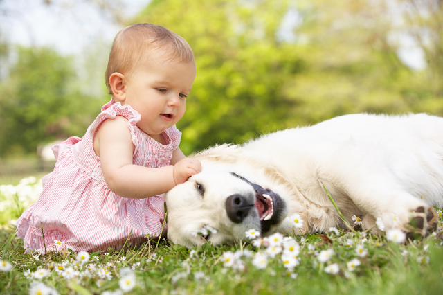 Your Pet Will Make Your Life Better
