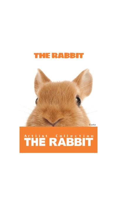 THE RABBIT 2