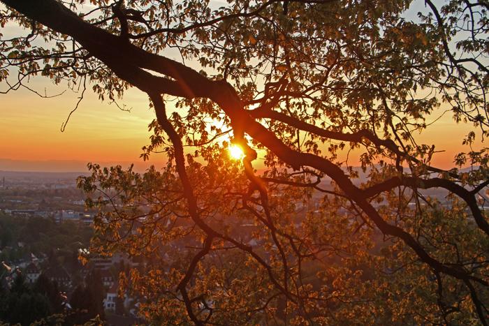 Sonnenuntergang Freiburg