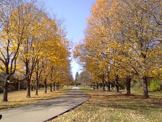 Fall at Liguori