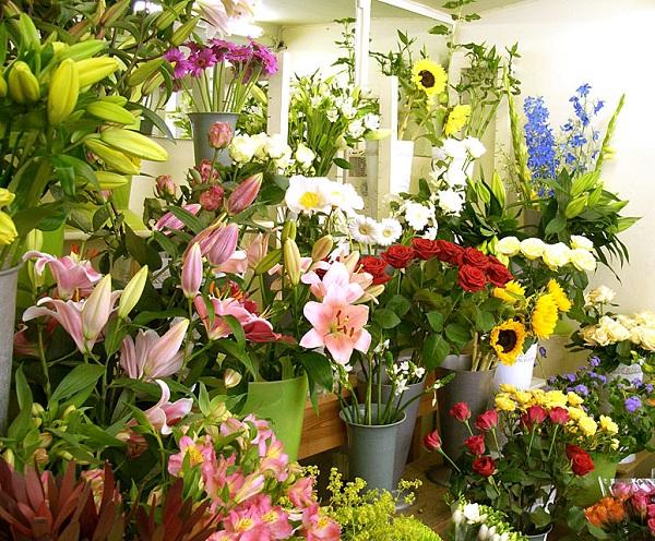 Shop hoa tươi Nguyễn Thị Minh Khai