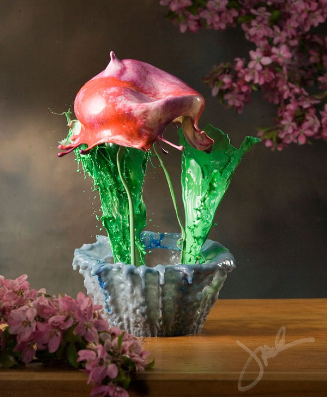 Жидкие цветы. Jack Long 7