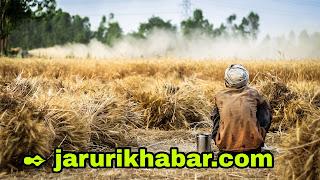 जरूरी खबर, farmers news,  jaruri khabar