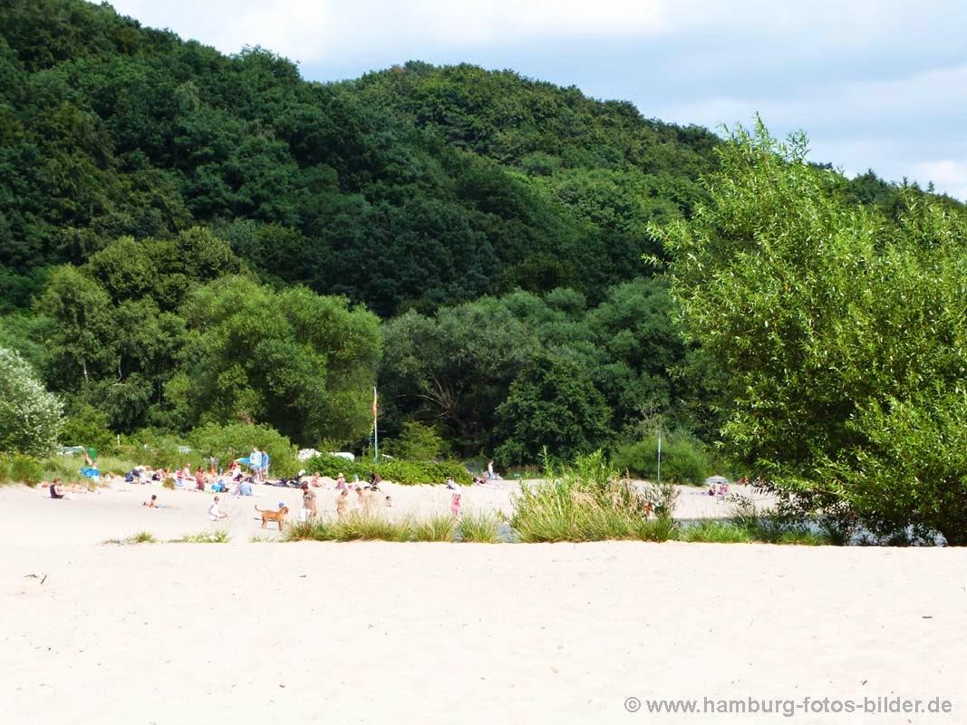 Blick vom Strand in Richtung Elbecamp Campingplatz am Falkensteiner Ufer.