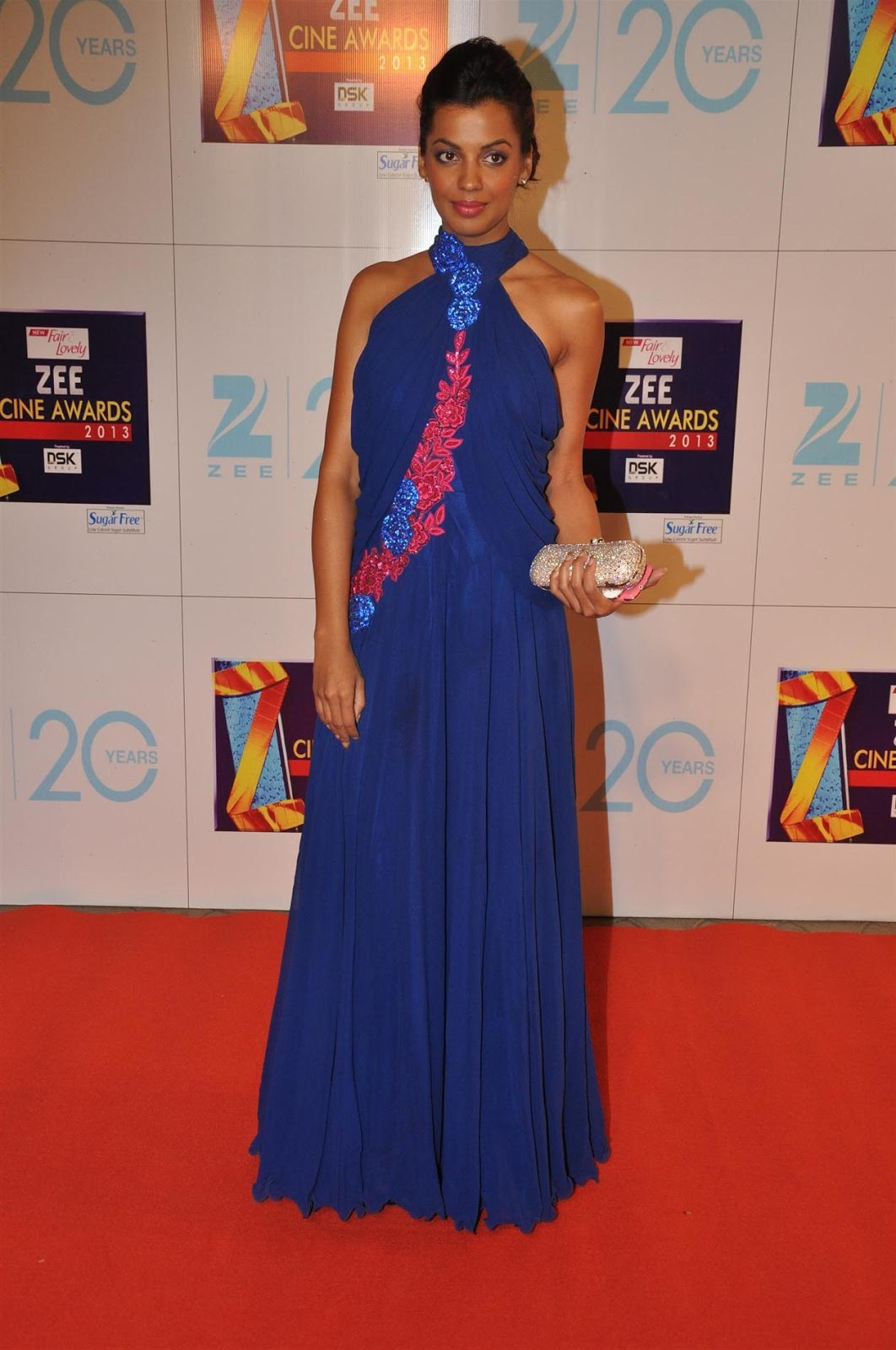 Sophie chaudhary, huma qureshi, yami gautam and other at zee cine awards 2013.