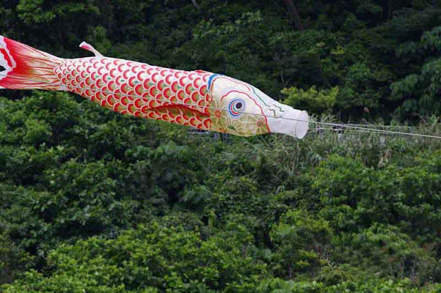 fish, carp streamer, Golden Week, Pentax K1