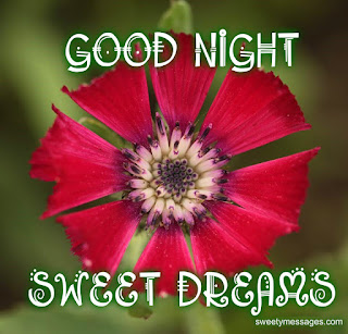 have a nice sweet dream image
