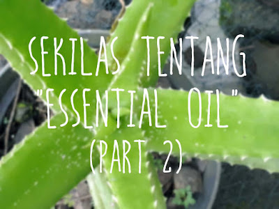 sekilas-tentang-essential-oils
