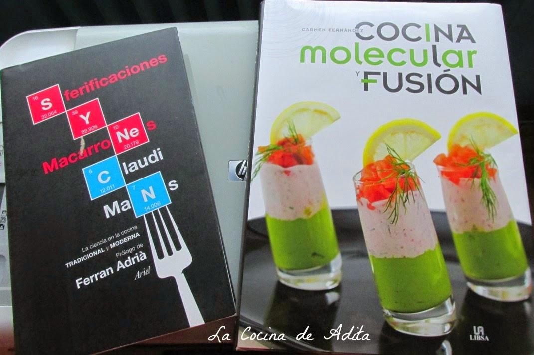 Tarta de mousse de mandarinas con esferificaci n cocina for Libros de cocina molecular