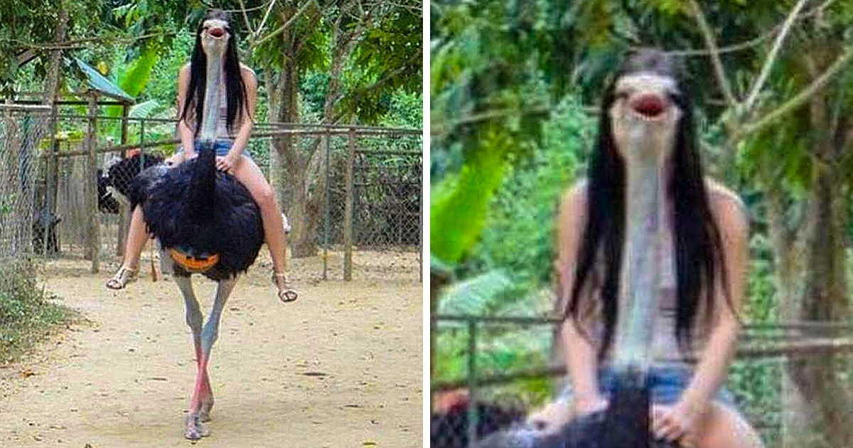 23 Perfectly Timed Pictures Of Animals That Messed With Our Heads For A Minute