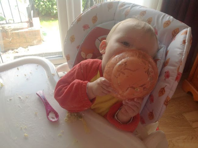 Baby-led-weaning-baby-in-highchair-with-bowl-licking-it-clean