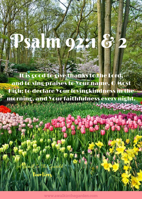 A Walk In The Garden: Song of Thanksgiving and Praise
