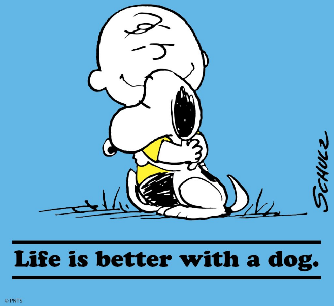 dogsnoopy.png (658×602)