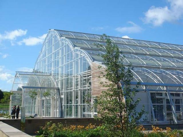 البيوت الزجاجية